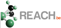 logo_REACH.BE.png